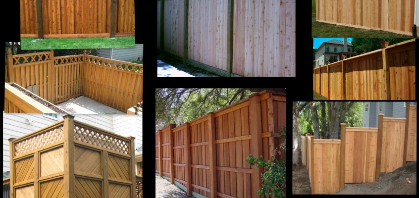 Fence and Privacy Wall Ideas